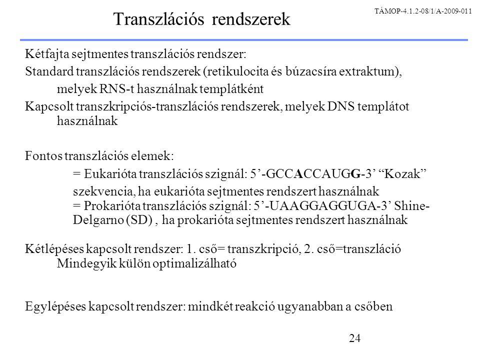Transzlációs rendszerek
