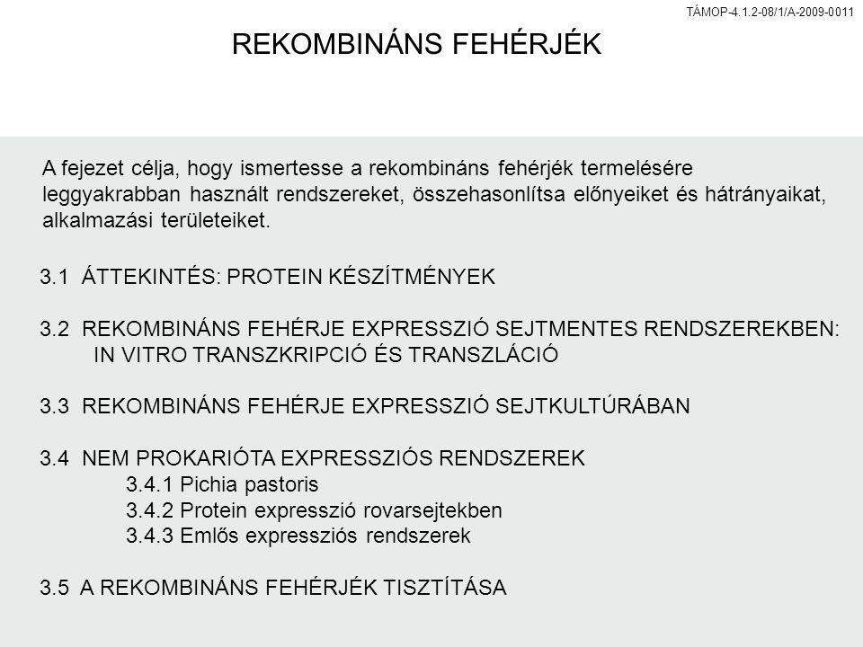 REKOMBINÁNS FEHÉRJÉK A fejezet célja, hogy ismertesse a rekombináns fehérjék termelésére.