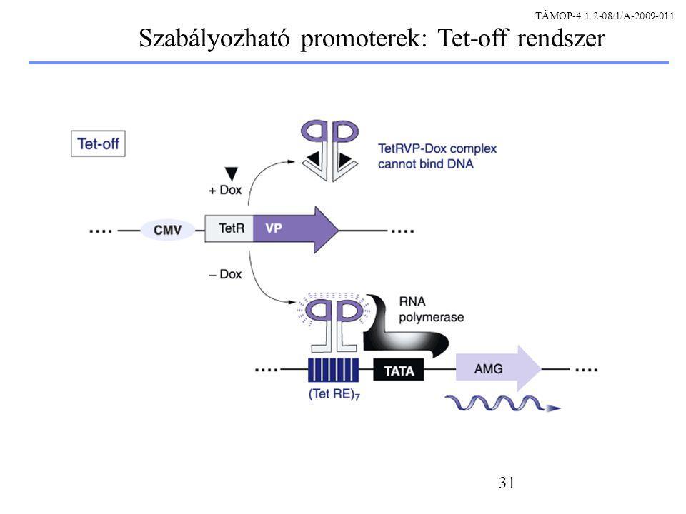 Szabályozható promoterek: Tet-off rendszer