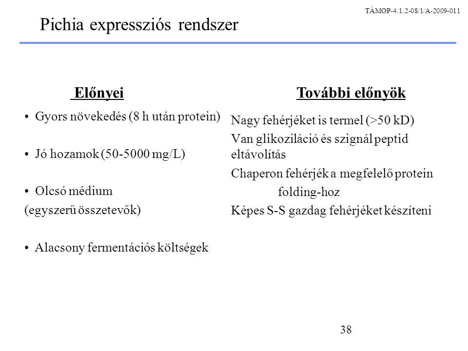 Pichia expressziós rendszer