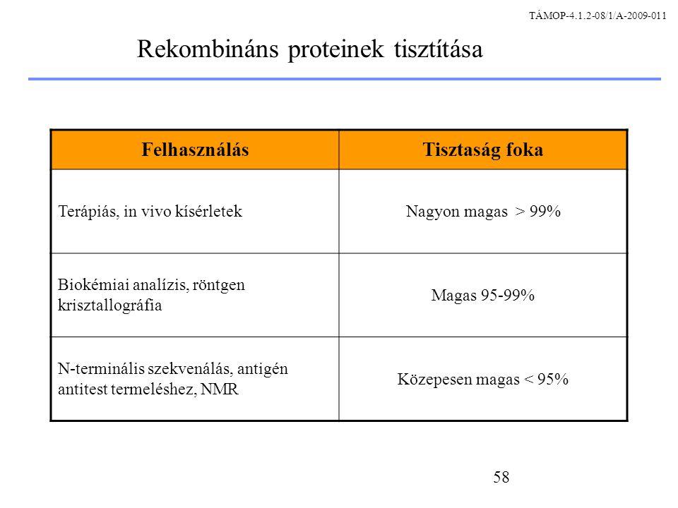 Rekombináns proteinek tisztítása