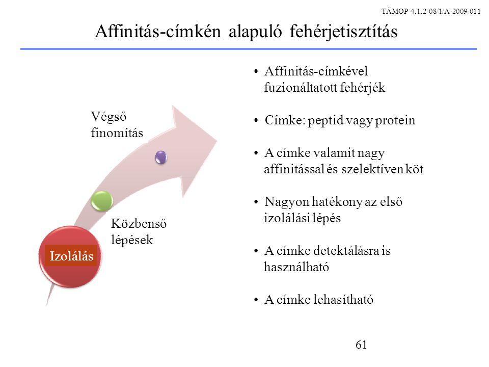 Affinitás-címkén alapuló fehérjetisztítás