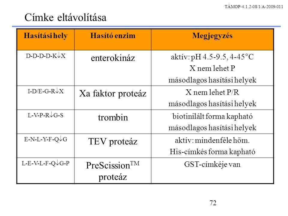 Címke eltávolítása enterokináz Xa faktor proteáz trombin TEV proteáz
