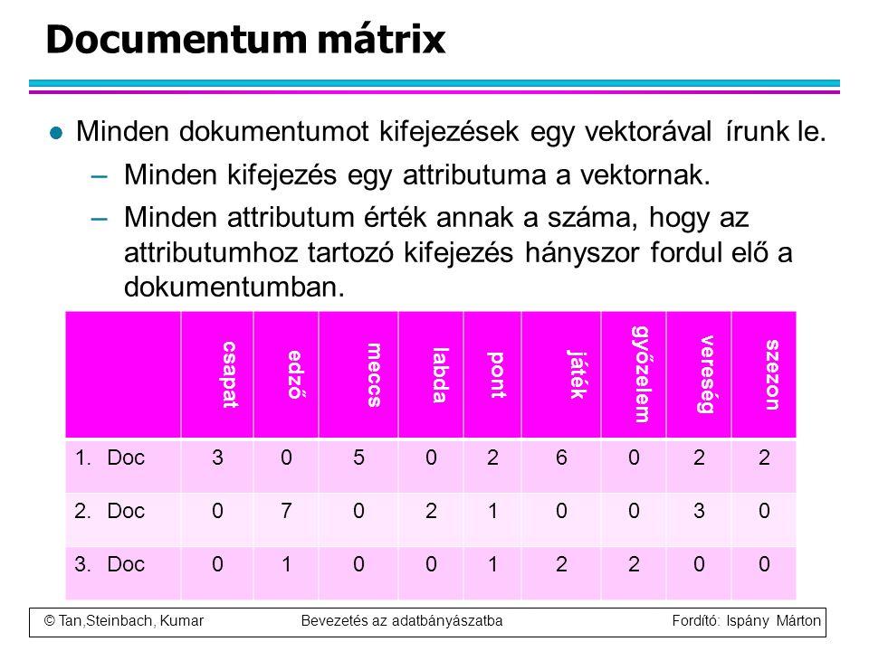 Documentum mátrix Minden dokumentumot kifejezések egy vektorával írunk le. Minden kifejezés egy attributuma a vektornak.