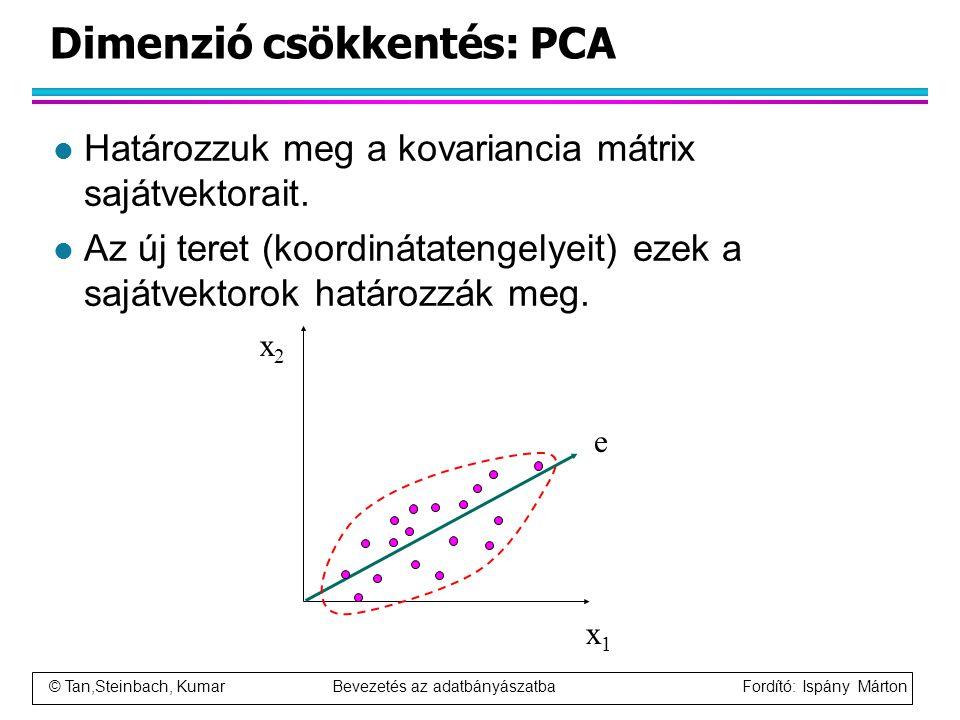 Dimenzió csökkentés: PCA