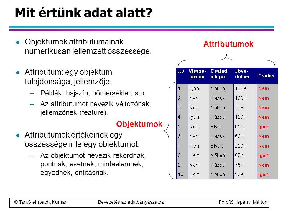 Mit értünk adat alatt Objektumok attributumainak numerikusan jellemzett összessége. Attributum: egy objektum tulajdonsága, jellemzője.