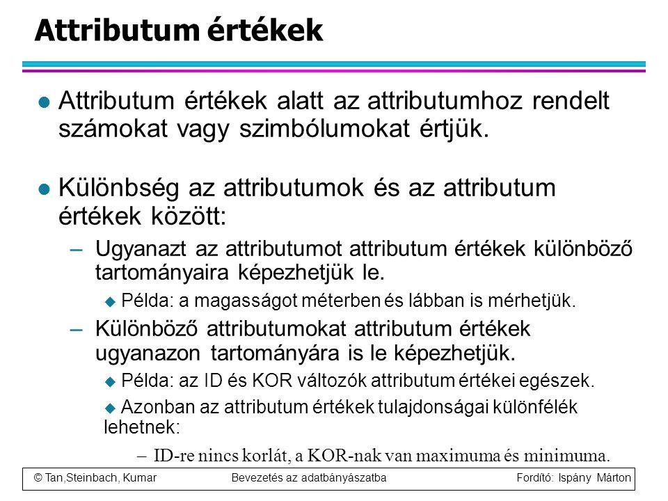 Attributum értékek Attributum értékek alatt az attributumhoz rendelt számokat vagy szimbólumokat értjük.