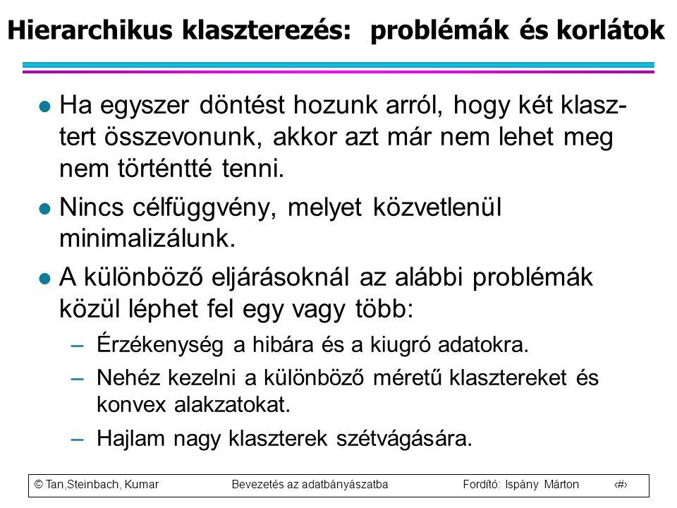 Hierarchikus klaszterezés: problémák és korlátok