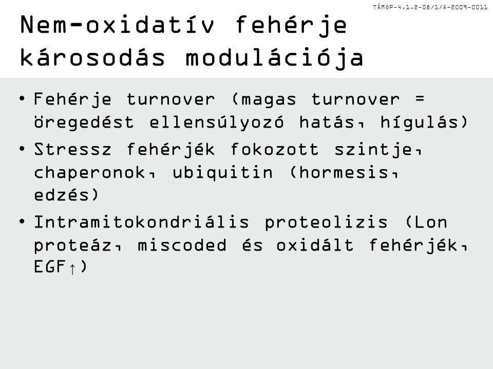Nem-oxidatív fehérje károsodás modulációja