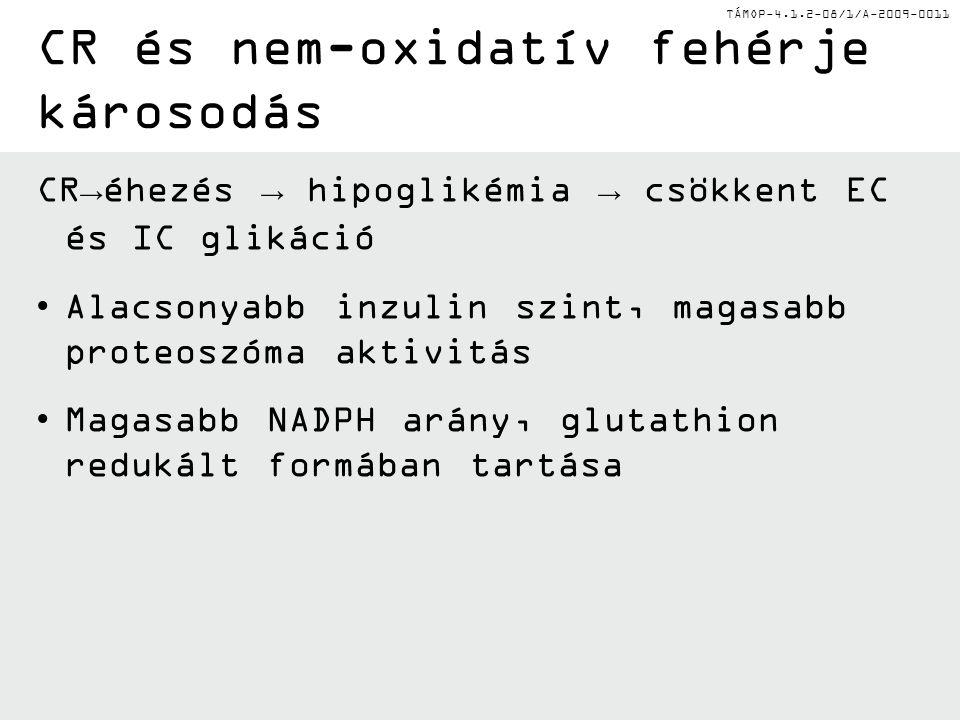 CR és nem-oxidatív fehérje károsodás