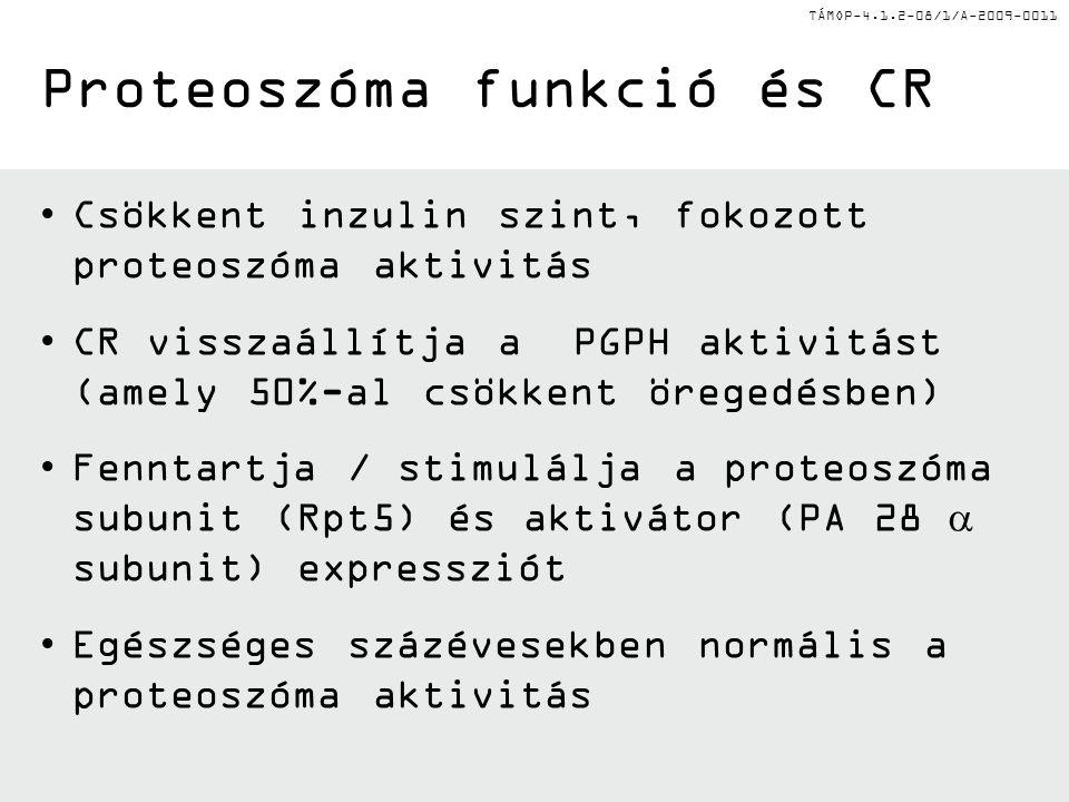 Proteoszóma funkció és CR