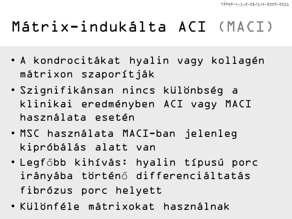 Mátrix-indukálta ACI (MACI)