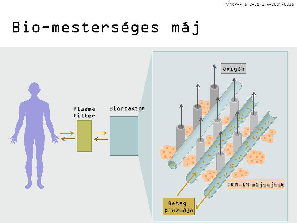 Bio-mesterséges máj Oxigén Plazma Bioreaktor filter PKM-19 májsejtek
