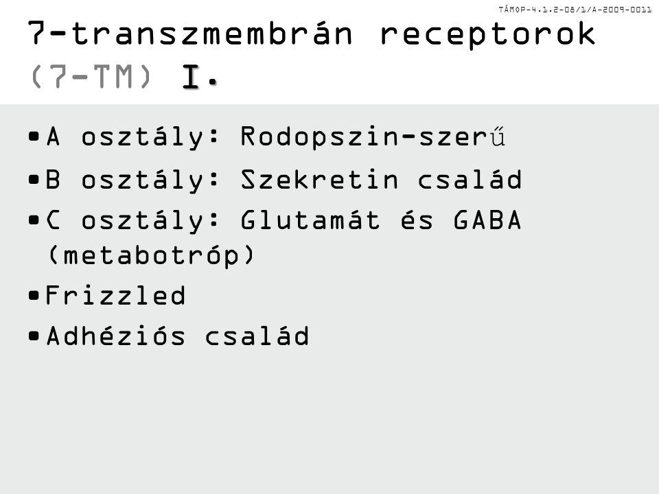 7-transzmembrán receptorok (7-TM) I.