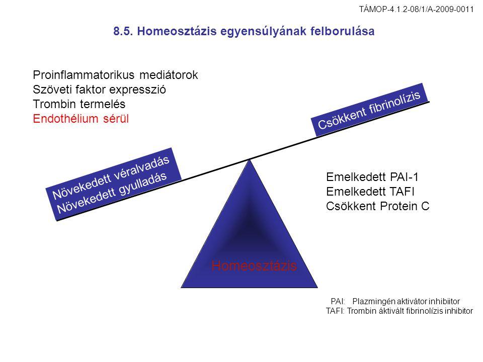 Homeosztázis 8.5. Homeosztázis egyensúlyának felborulása