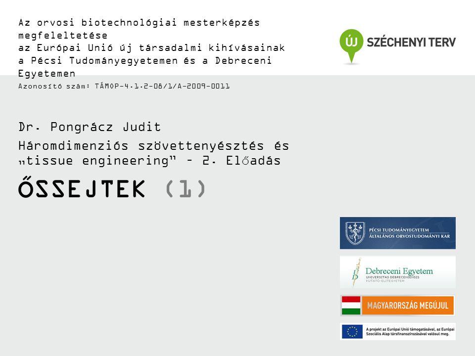 Őssejtek (1) Dr. Pongrácz Judit