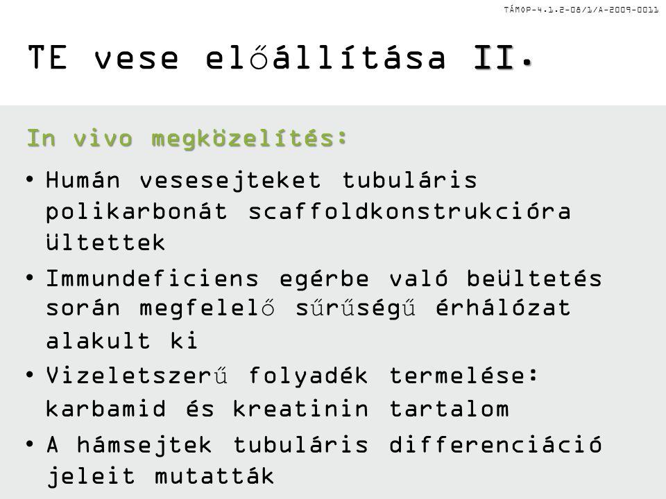 TE vese előállítása II. In vivo megközelítés: