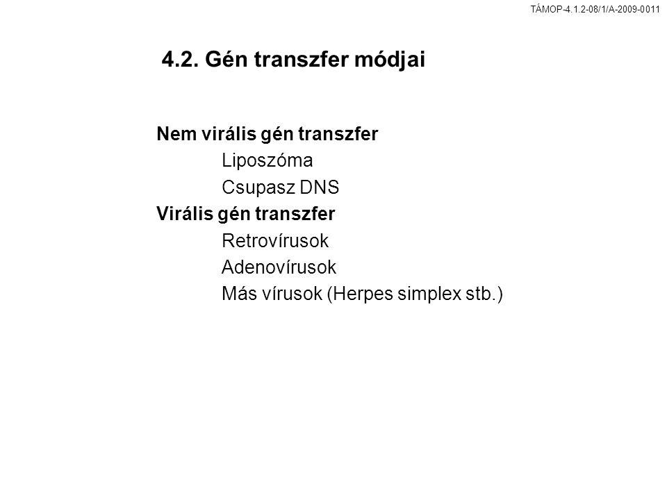 4.2. Gén transzfer módjai