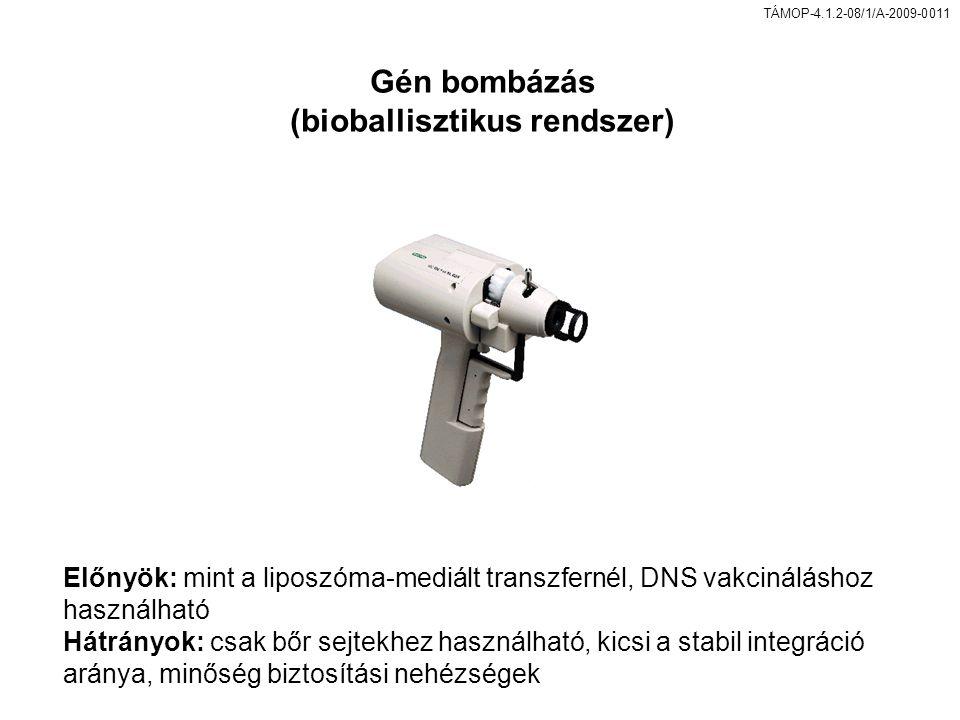(bioballisztikus rendszer)