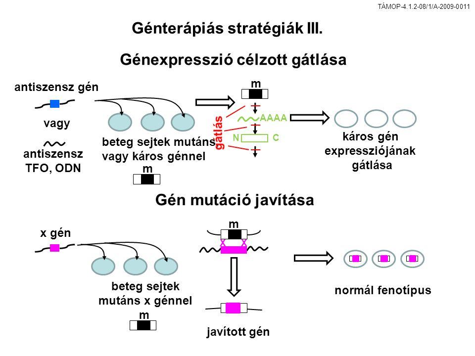Génterápiás stratégiák III. Génexpresszió célzott gátlása