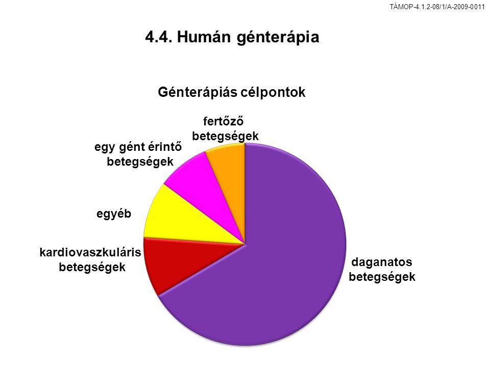 4.4. Humán génterápia Génterápiás célpontok fertőző egy gént érintő