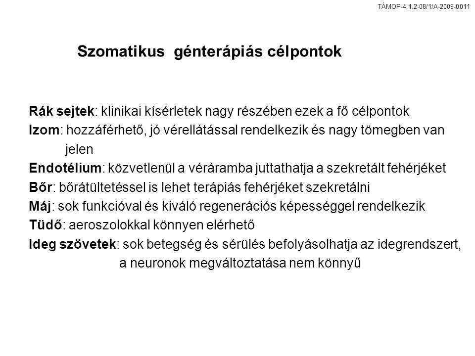 Szomatikus génterápiás célpontok