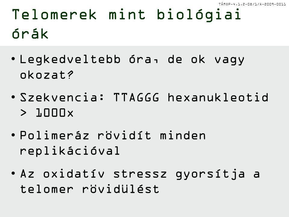 Telomerek mint biológiai órák