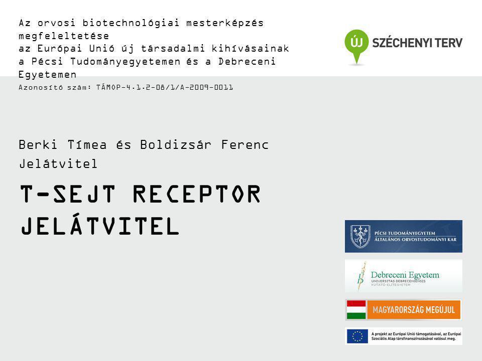 T-sejt receptor jelátvitel