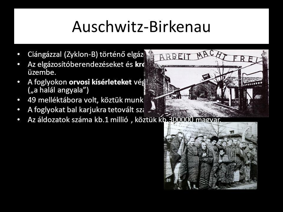 Auschwitz-Birkenau Ciángázzal (Zyklon-B) történő elgázosítás