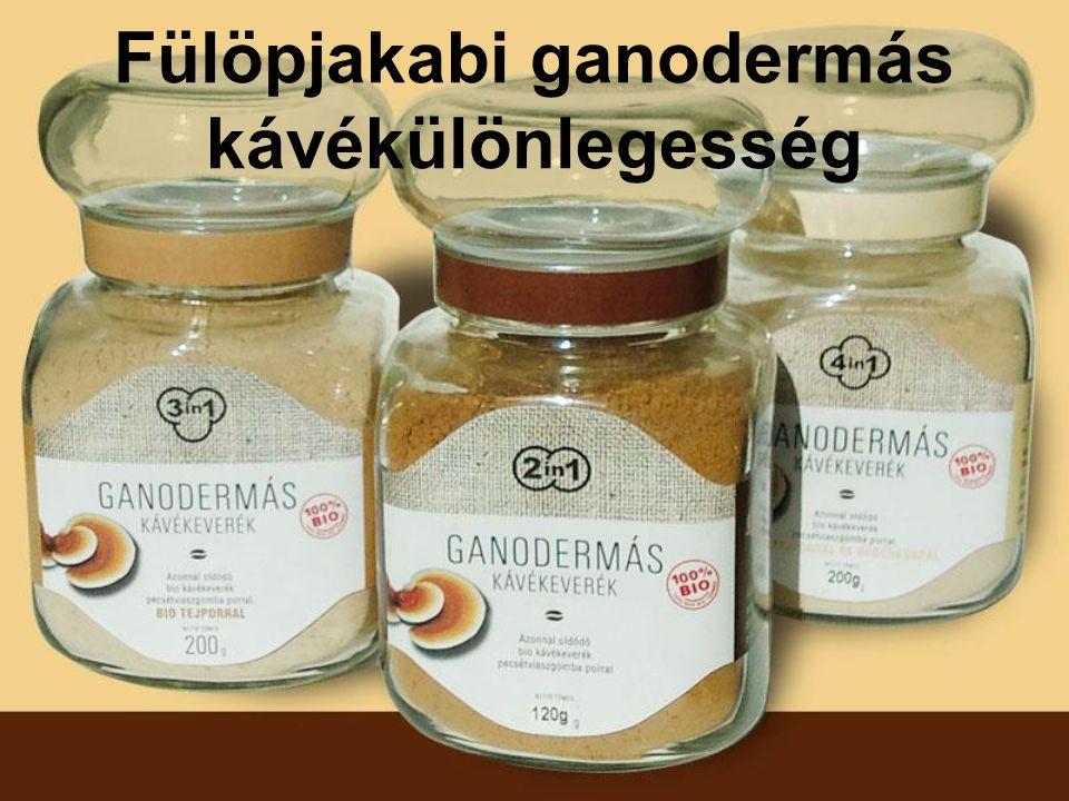 Fülöpjakabi ganodermás kávékülönlegesség