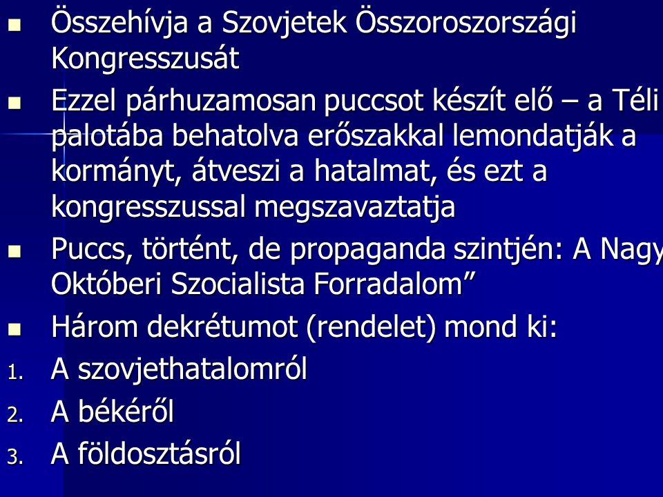 Összehívja a Szovjetek Összoroszországi Kongresszusát