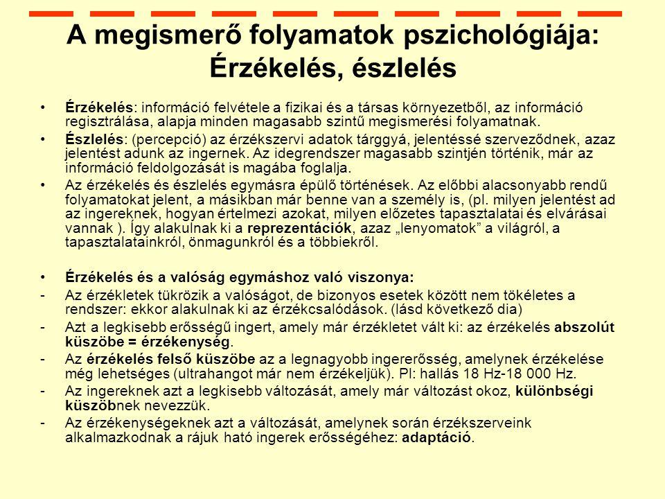 A megismerő folyamatok pszichológiája: Érzékelés, észlelés