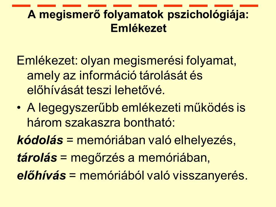 A megismerő folyamatok pszichológiája: Emlékezet