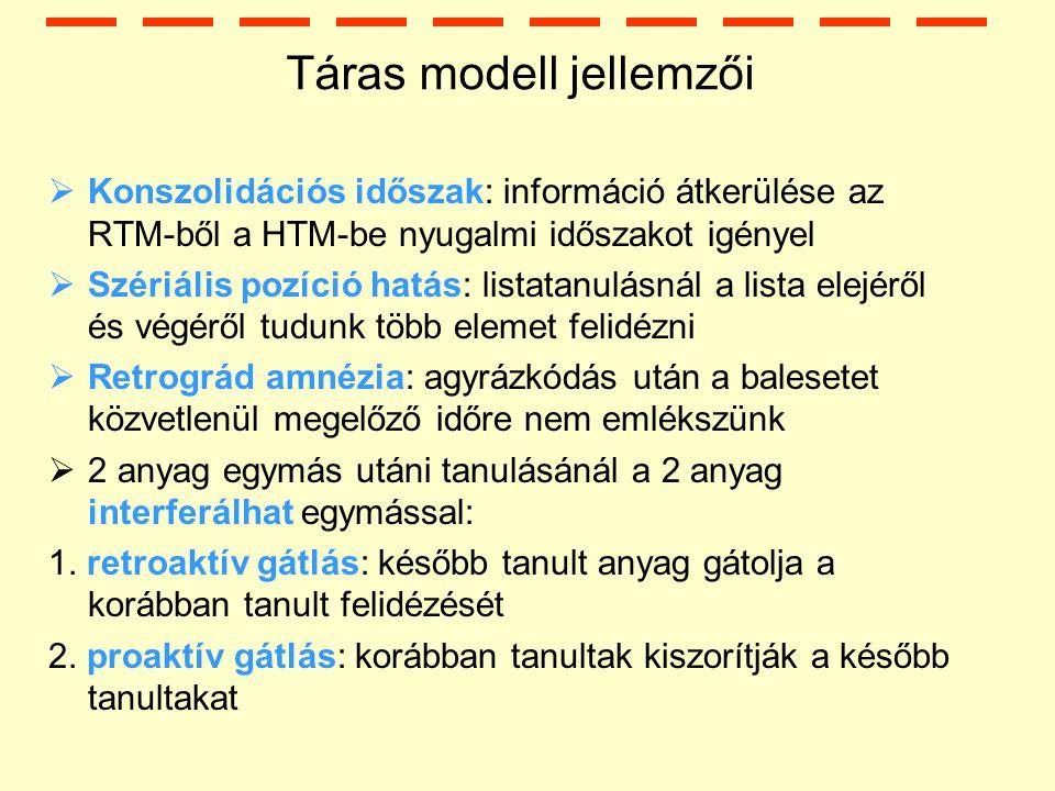 Táras modell jellemzői