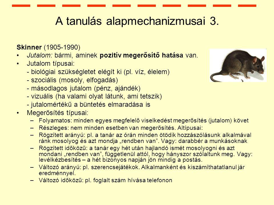 A tanulás alapmechanizmusai 3.