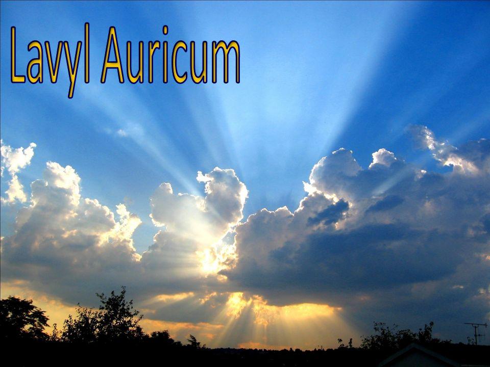 Lavyl Auricum 1