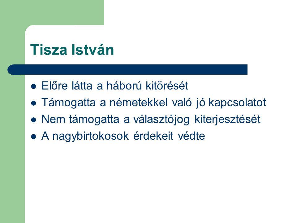 Tisza István Előre látta a háború kitörését