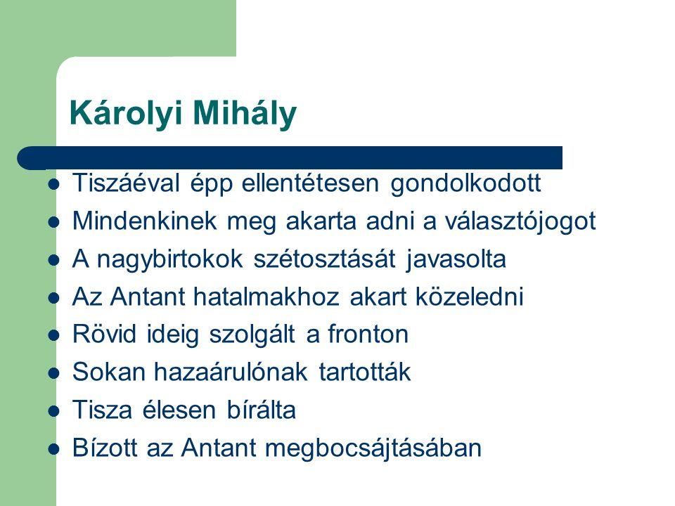 Károlyi Mihály Tiszáéval épp ellentétesen gondolkodott