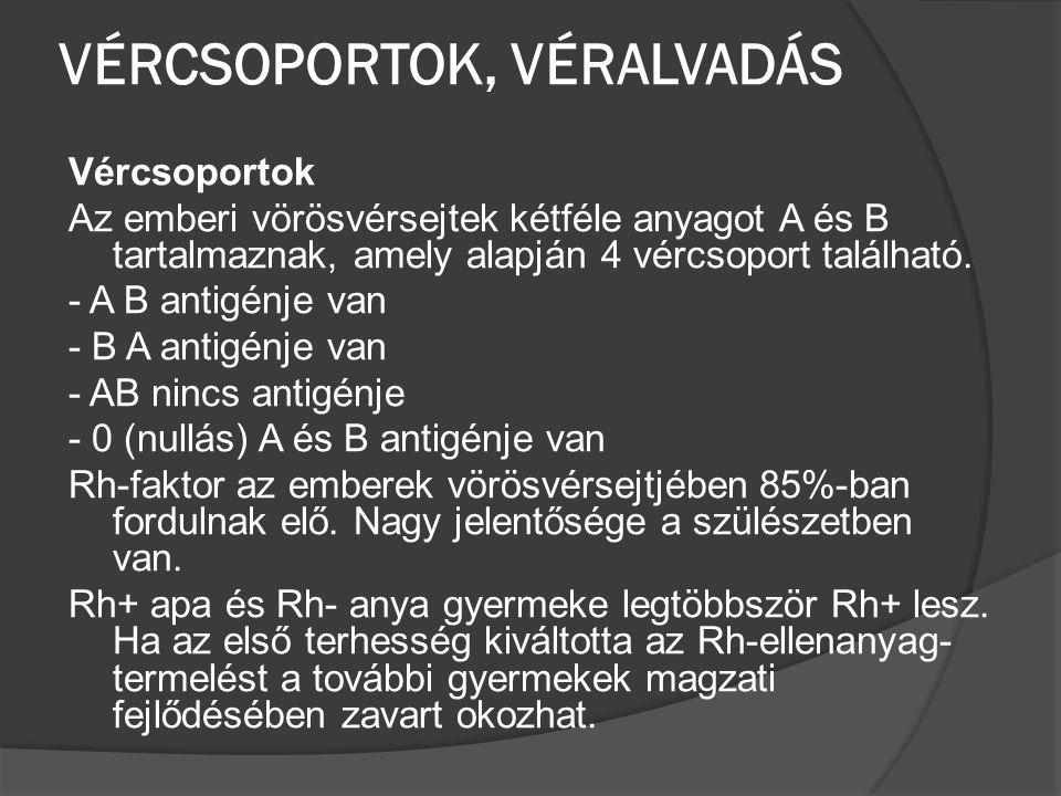 VÉRCSOPORTOK, VÉRALVADÁS
