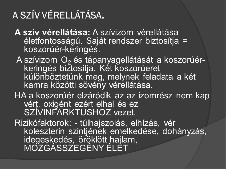 A SZÍV VÉRELLÁTÁSA.