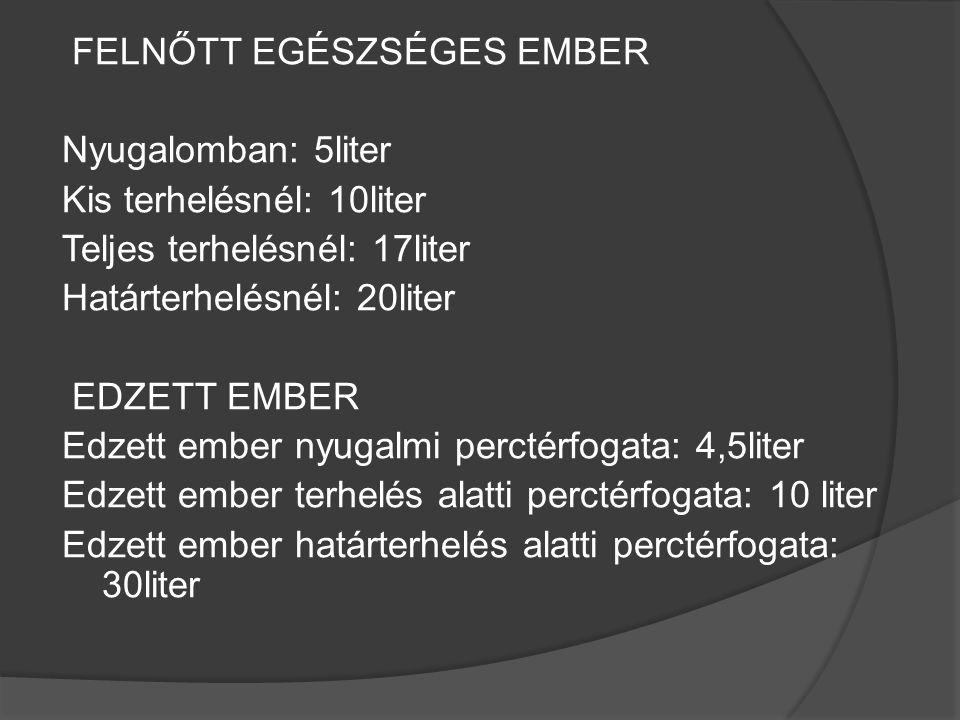 FELNŐTT EGÉSZSÉGES EMBER