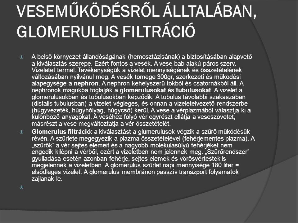 VESEMŰKÖDÉSRŐL ÁLLTALÁBAN, GLOMERULUS FILTRÁCIÓ