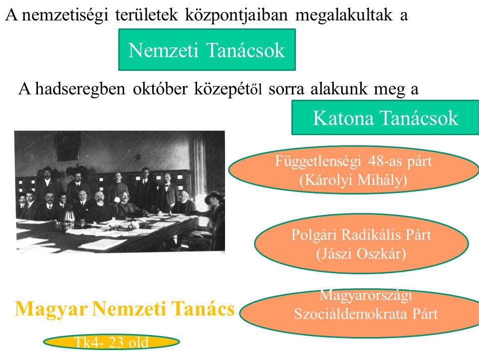 Nemzeti Tanácsok Katona Tanácsok Magyar Nemzeti Tanács