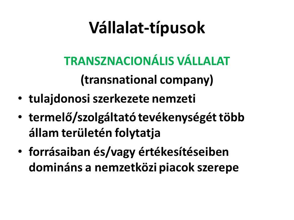 TRANSZNACIONÁLIS VÁLLALAT (transnational company)