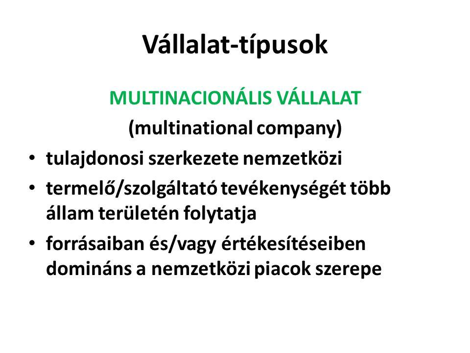 MULTINACIONÁLIS VÁLLALAT (multinational company)