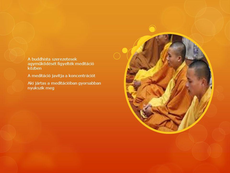A buddhista szerezetesek agyműködését figyelték meditáció közben