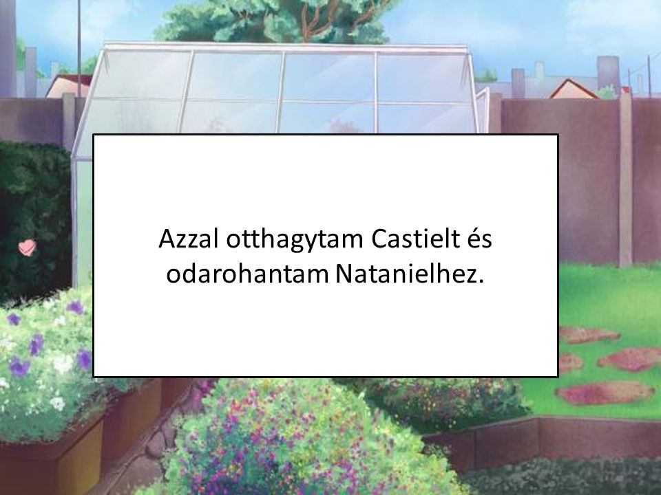 Azzal otthagytam Castielt és odarohantam Natanielhez.