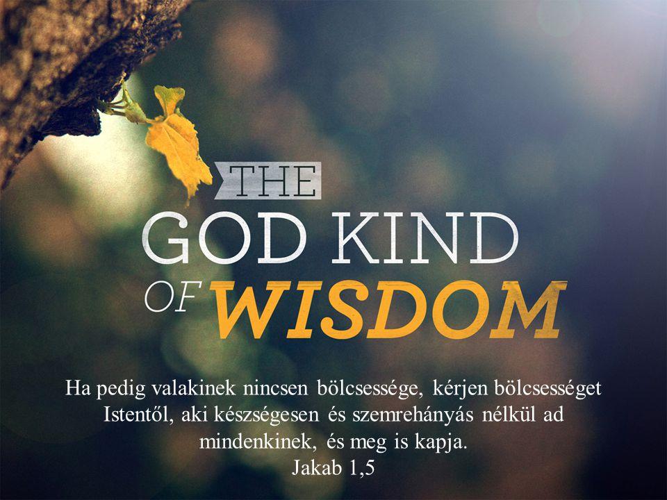 Ha pedig valakinek nincsen bölcsessége, kérjen bölcsességet