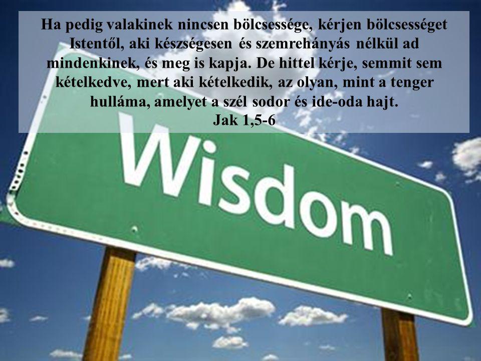 Ha pedig valakinek nincsen bölcsessége, kérjen bölcsességet Istentől, aki készségesen és szemrehányás nélkül ad mindenkinek, és meg is kapja. De hittel kérje, semmit sem kételkedve, mert aki kételkedik, az olyan, mint a tenger hulláma, amelyet a szél sodor és ide-oda hajt.