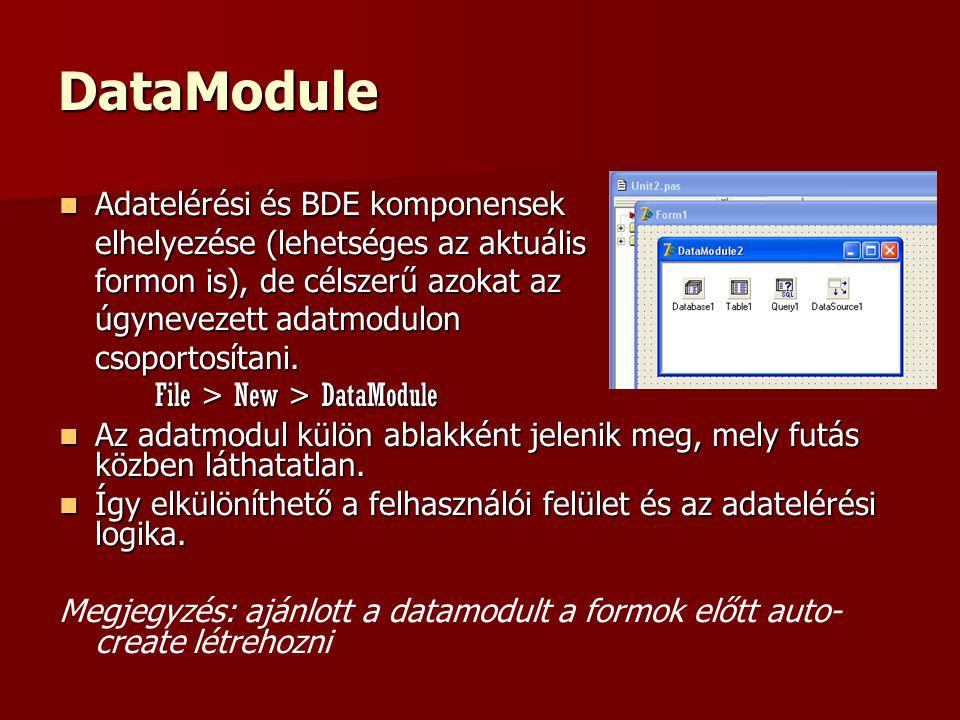 DataModule Adatelérési és BDE komponensek